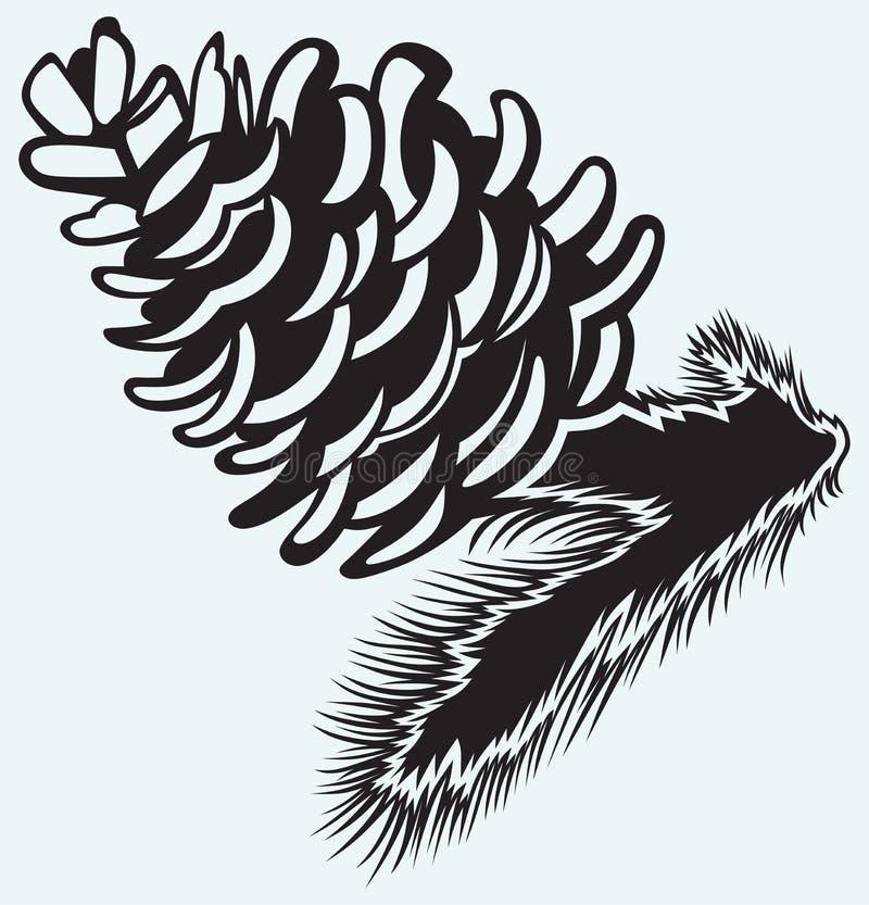 Strobile сосны иллюстрация штока