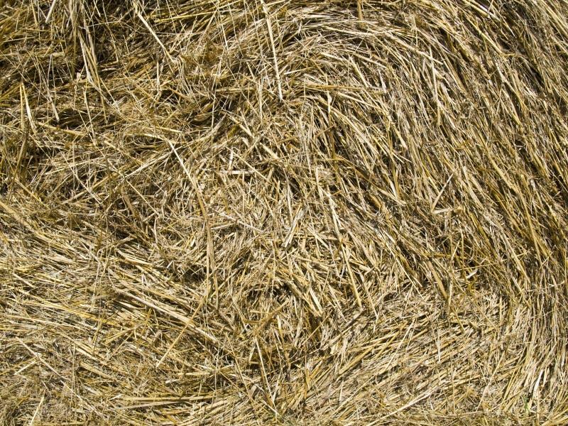 Stroh-Hintergrund stockbilder
