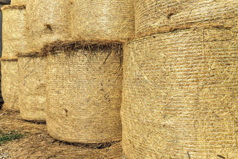 Stroh rollt nach der Getreideernte in der Scheune stockfotos