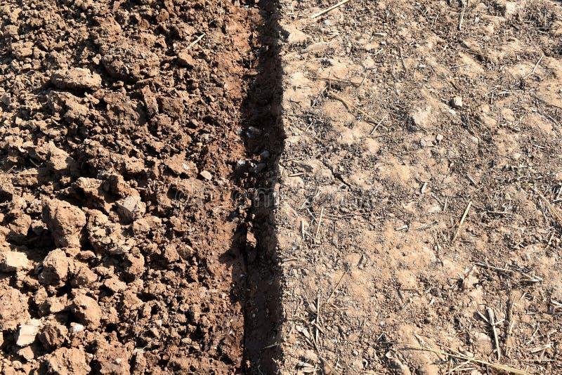 Stroh- und Bodenklumpen auf dem Reisgebiet vor Betriebsreis lizenzfreies stockfoto