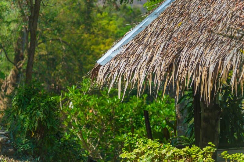 Strohdachhaus und ein grüner Garten mit blauem Himmel im Land stockbilder