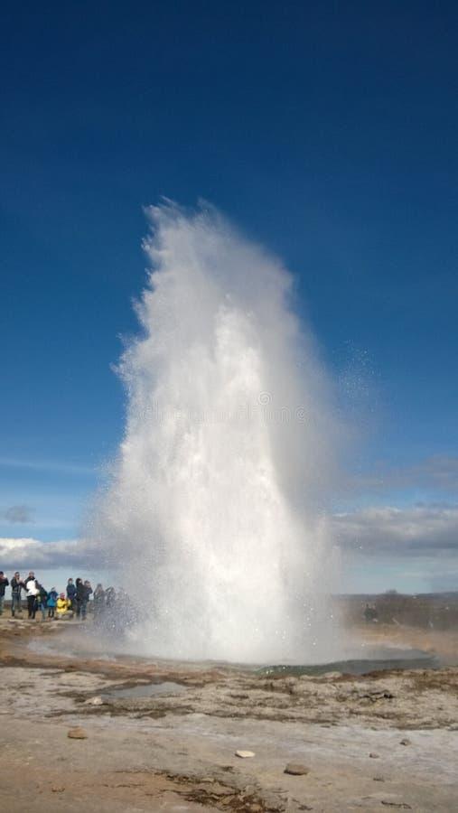 Strokkur Geysir Island arkivbild