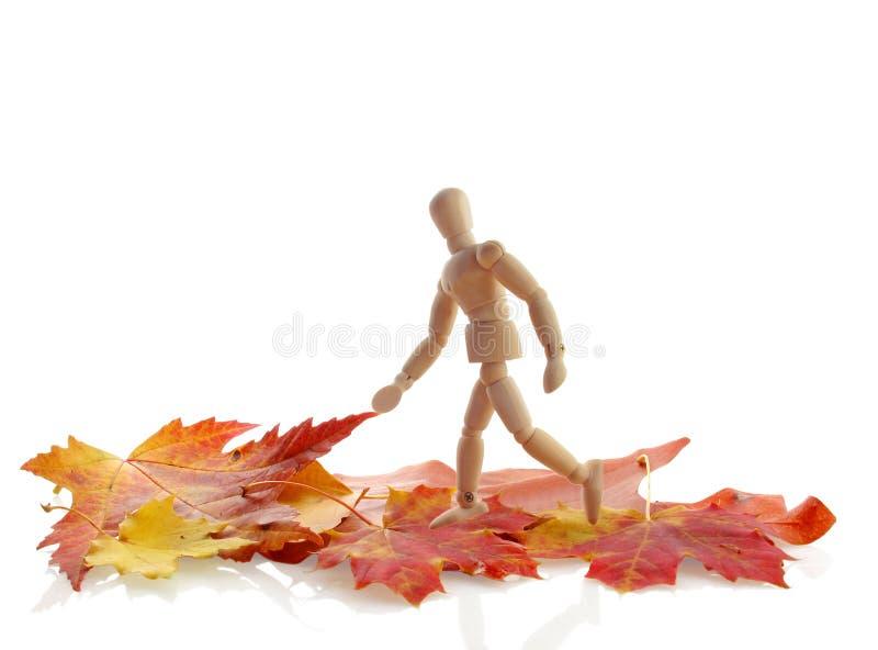 Download Stroll do outono foto de stock. Imagem de outdoors, exercício - 16860146
