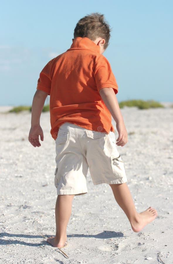 Stroll na praia fotos de stock royalty free