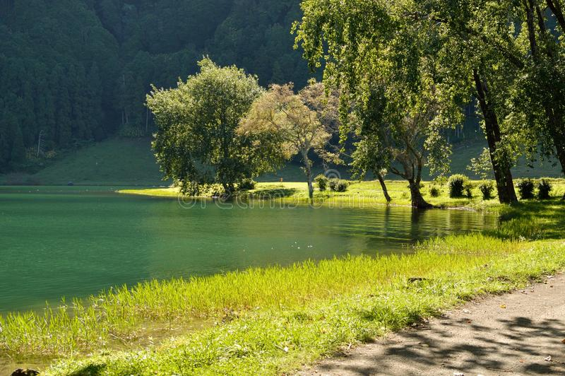 Strolling around Lagoa Sete Cidades stock photos