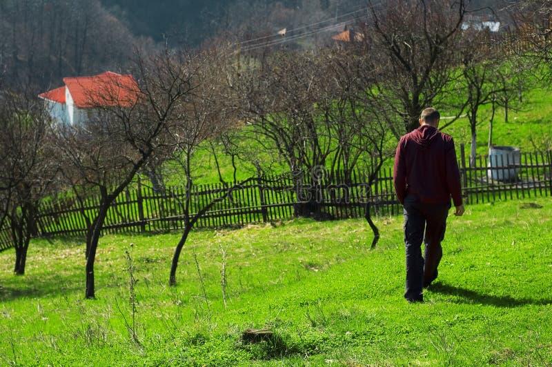 Strolling in Baia Mare, Romania. A man strolls through the countryside in Baia Mare, Romania stock image