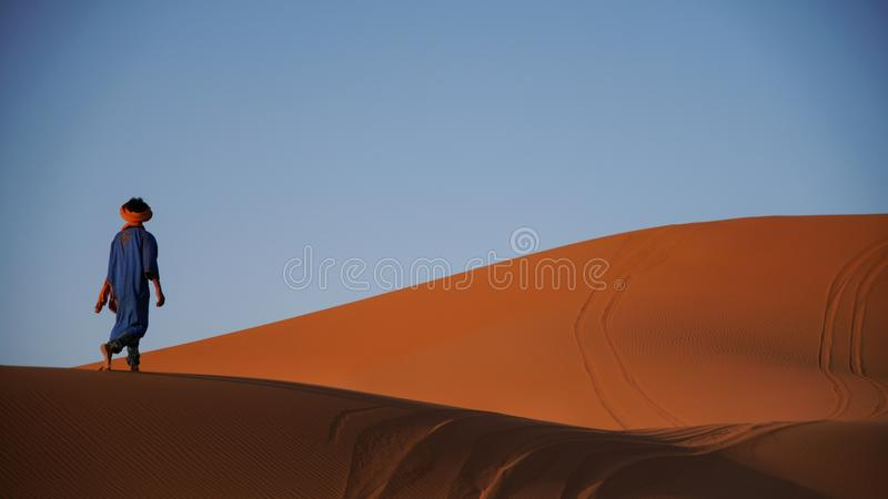 Strolling through the Sahara. A guide wanders barefoot across the sand dunes stock image