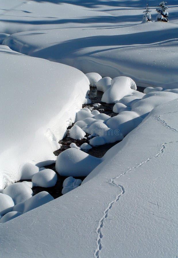 Strom im Schnee lizenzfreie stockbilder