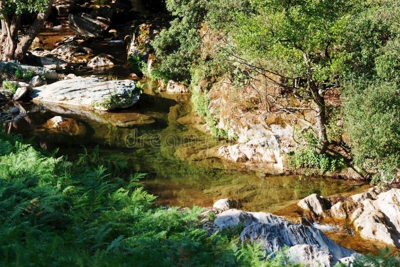 Strom in Korsika-Berg lizenzfreie stockfotos