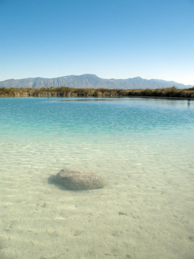 stromatolite för cienegascuatromexico rev arkivfoto