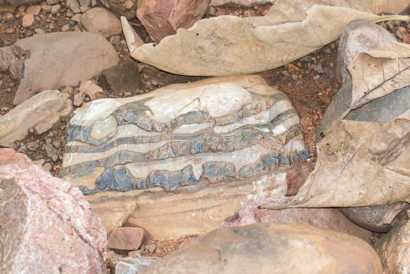 Stromatolite-Kalkstein-Bildung Indien lizenzfreies stockfoto