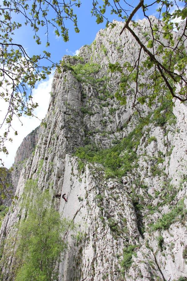 Strome pionowo gór skały zdjęcie royalty free