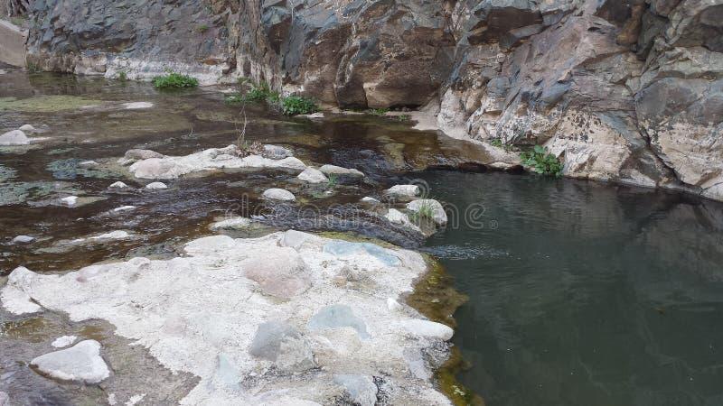 Stromende kreek in het nationale bos van Tonto stock foto's
