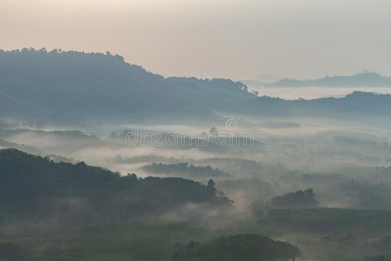 Stromende mistgolven op berg tropisch regenwoud in phangnga t stock foto