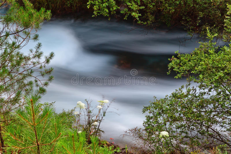 Download Stromende rivier stock afbeelding. Afbeelding bestaande uit milieu - 29503461