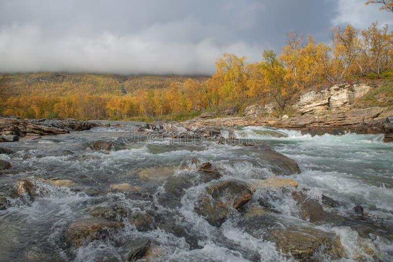 Stromende rivier in de herfst stock afbeeldingen