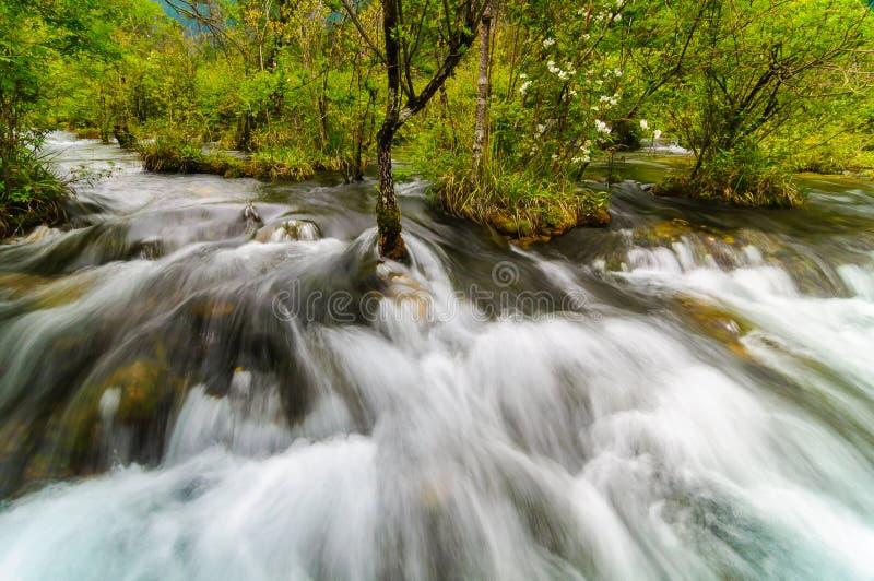 Stromende stroom in het Nationale Park van Jiuzhaigou, Sichuan, China royalty-vrije stock afbeelding