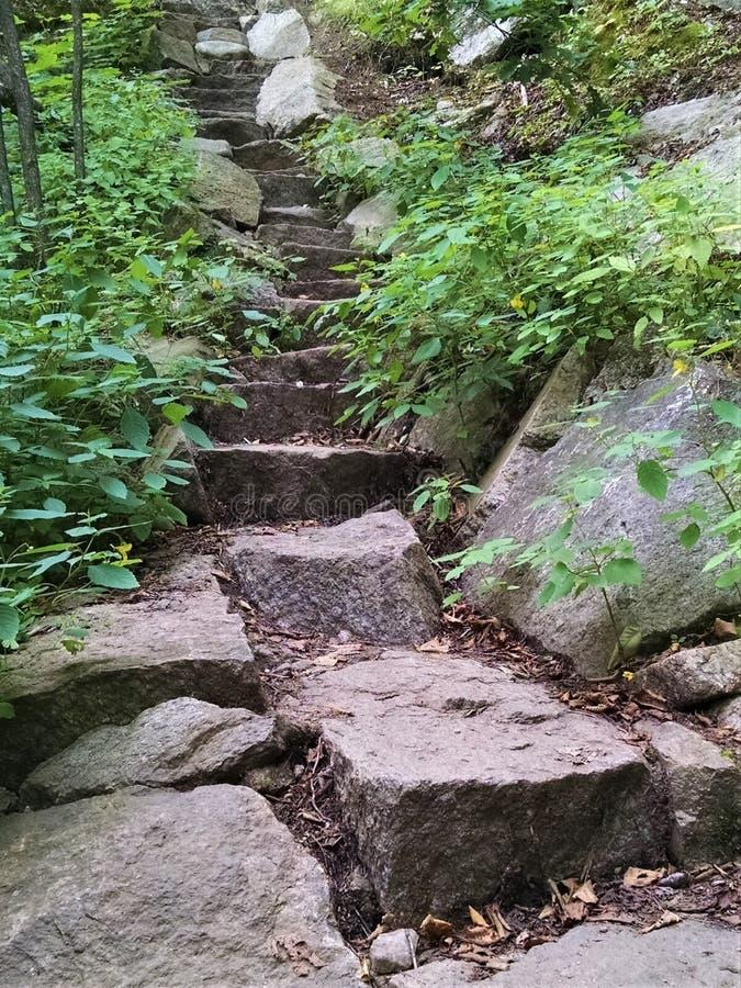 Stromi kamienni kroki up Szturchają O bimberu ślad zdjęcie royalty free