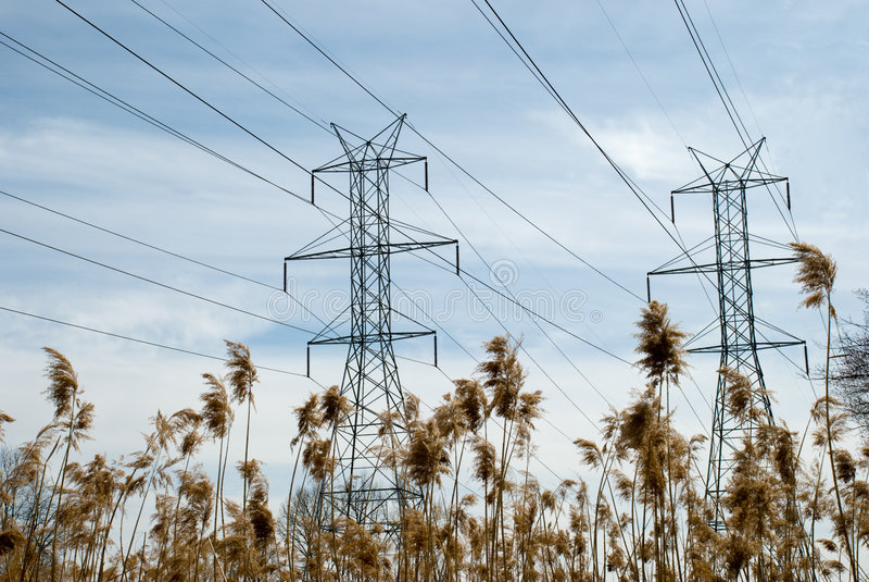 Stromleitung Kontrolltürme und Binse stockfotografie