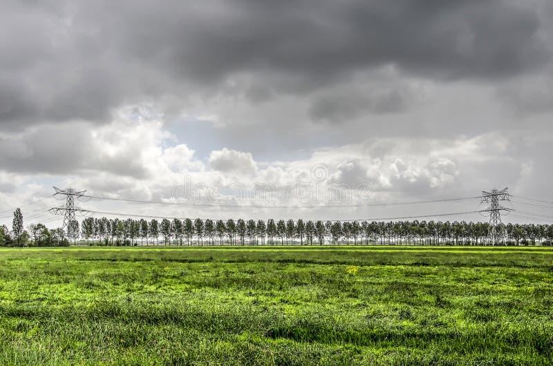 Stromleitungen in einem niederländischen Polder stockfotos
