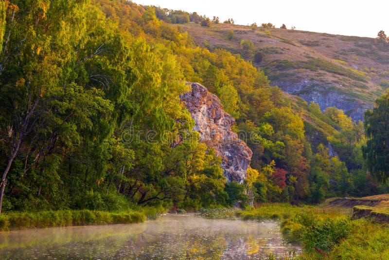 Stromy skalisty brzeg na rzece fotografia stock