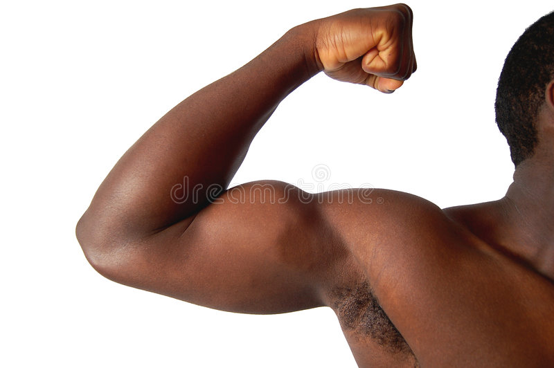 Download So Strong stock photo. Image of conquerer, tight, anatomy - 513284