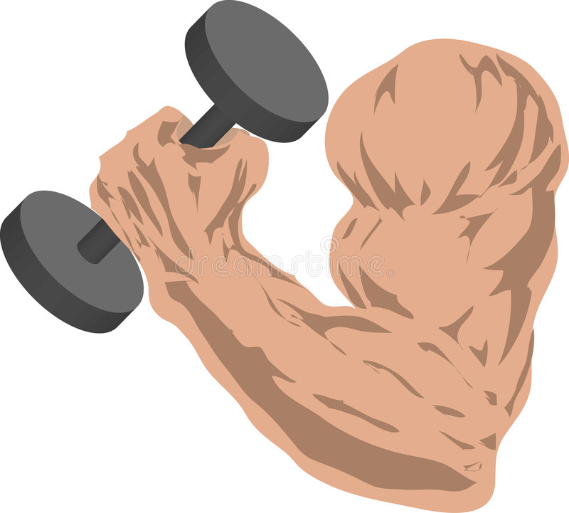 Download Strong arm stock illustration. Illustration of grasp, weight - 106404