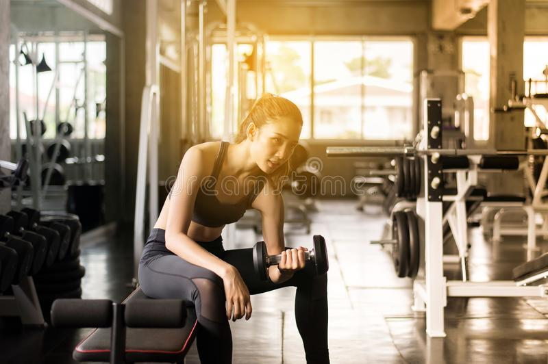 Strong asian woman exercise with dumbbells sitting on bench,Female in sportswear does the exercises at gym stock photo