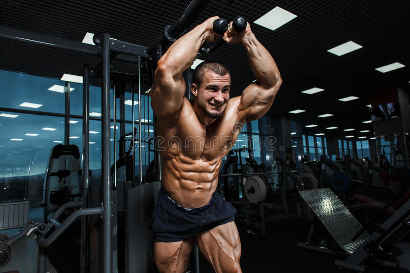 Strong Athletic Man bodybuilder Torso showing muscles in gym stock photography