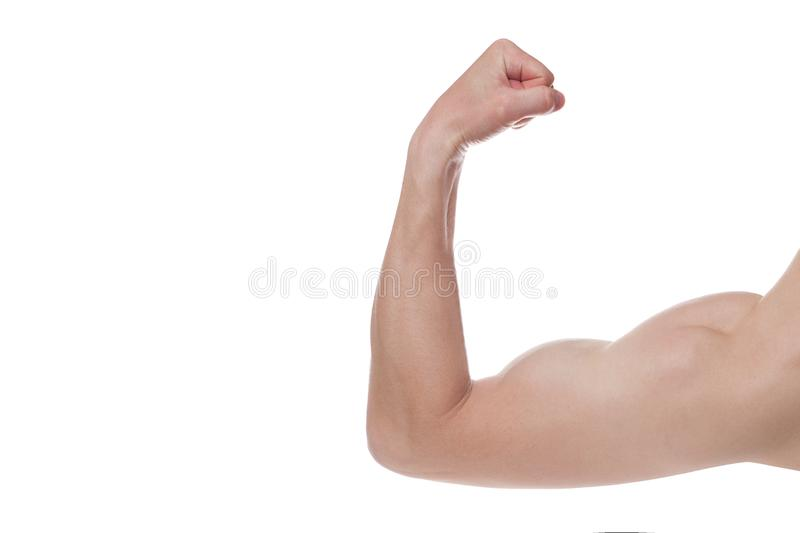 Strong Athletic Man Fitness Model, triceps over white background. Copy space royalty free stock photos