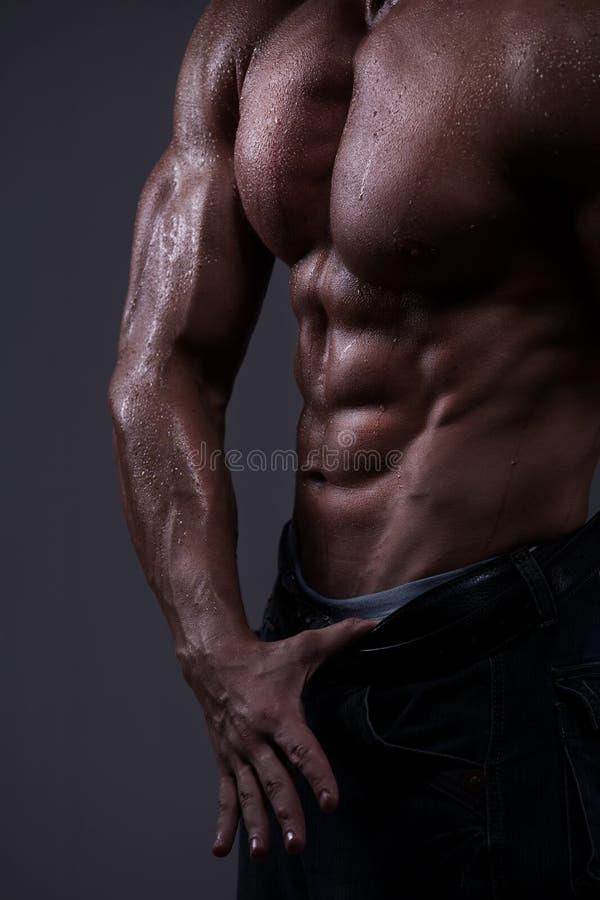 Strong athletic man torso stock photos