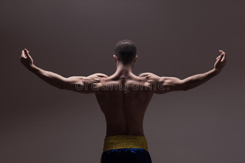 Strong athletic mans back. On dark grey gradient background royalty free stock photos