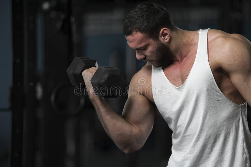 Strong Athletic Young Man With Dumbbells. In Hands. Sporty Athlete Posing on Background of Gym royalty free stock photos