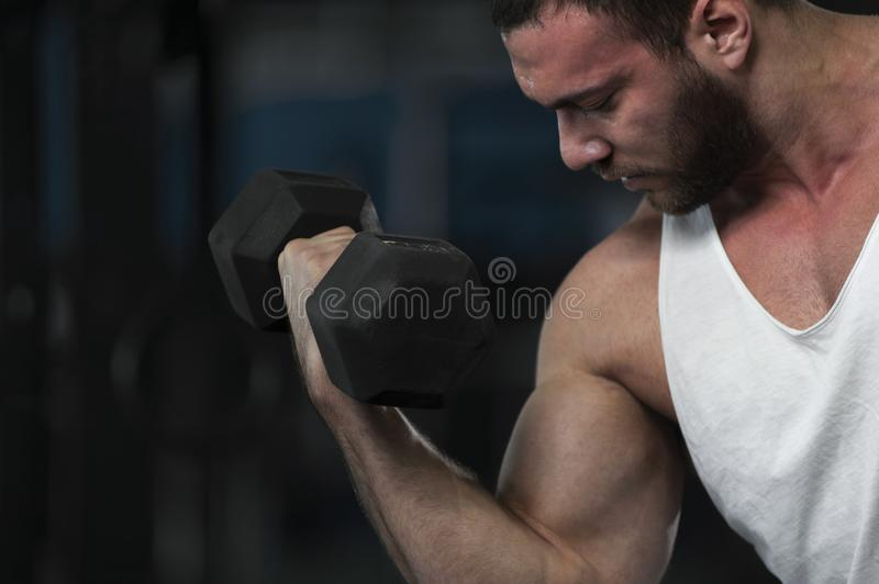 Strong Athletic Young Man With Dumbbells. In Hands. Sporty Athlete Posing on Background of Gym stock photos