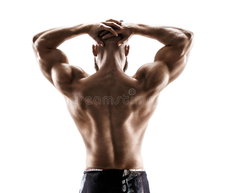 Strong back of muscular man flexing his arms on white background. stock photography