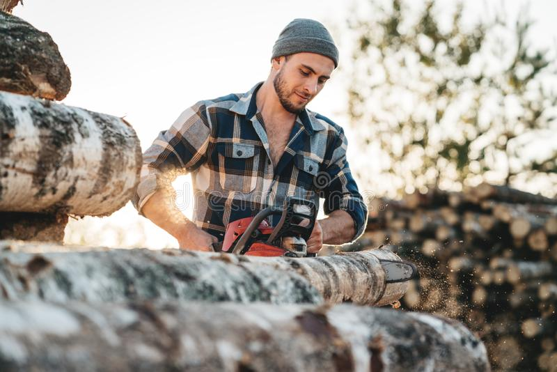 Bearded lumberjack in plaid shirt sawing tree with chainsaw royalty free stock photography