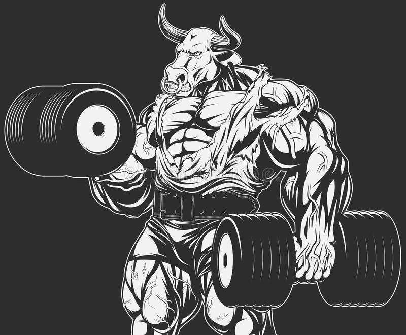 Strong bull with dumbbells. Vector illustration, strong bull doing exercise with dumbbells for biceps royalty free illustration