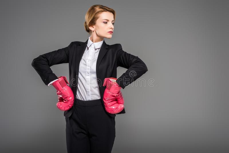 Strong businesswoman posing in suit and pink boxing gloves,. Isolated on grey royalty free stock photography