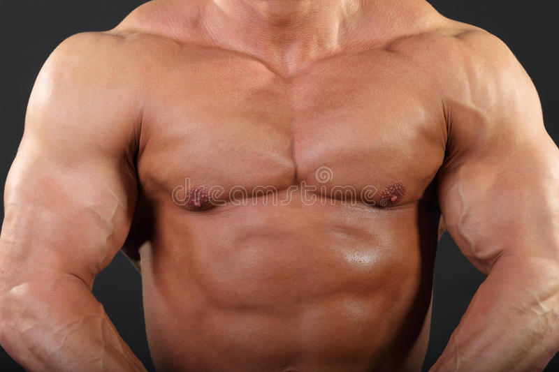 Download Strong Chest And Hand Muscles Of Bodybuilder Stock Image - Image: 24227431