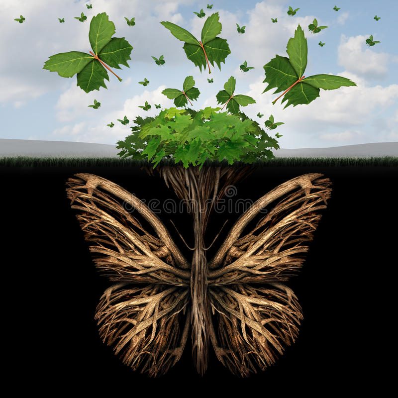 Strong Foundation. Concept as the roots of a plant shaped as a butterfly and the leaves of a bush in the shape of flying butterflies as a creative base symbol vector illustration