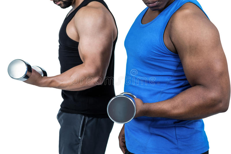 Strong friends posing with dumbbells royalty free stock photography