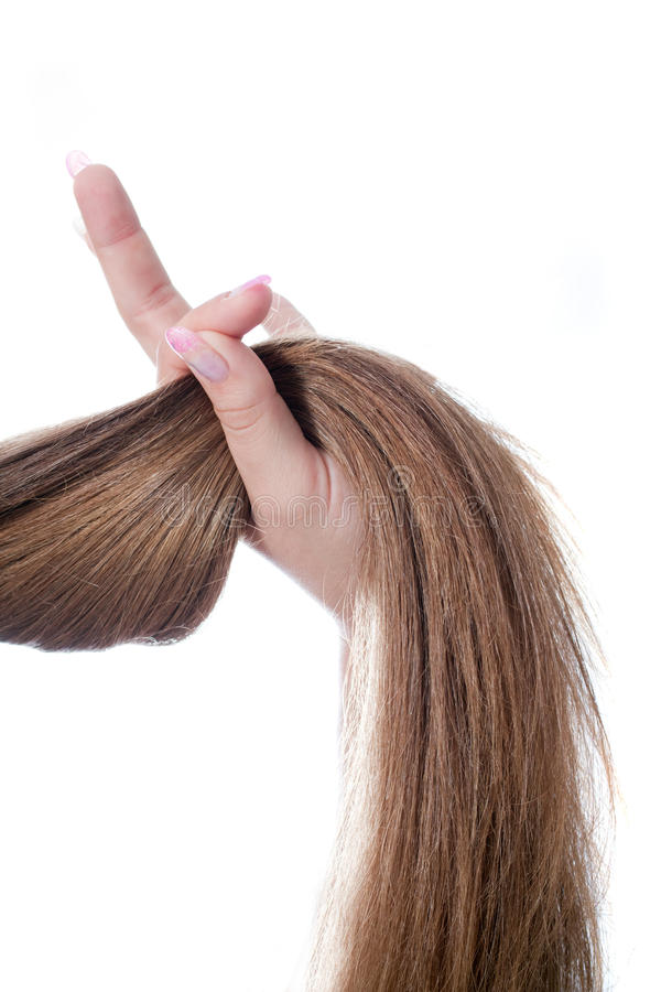 Strong hair. In the hand - over white background royalty free stock image