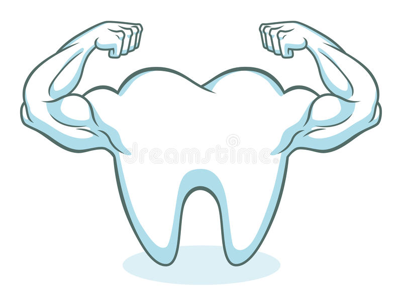 Strong healthy tooth vector illustration