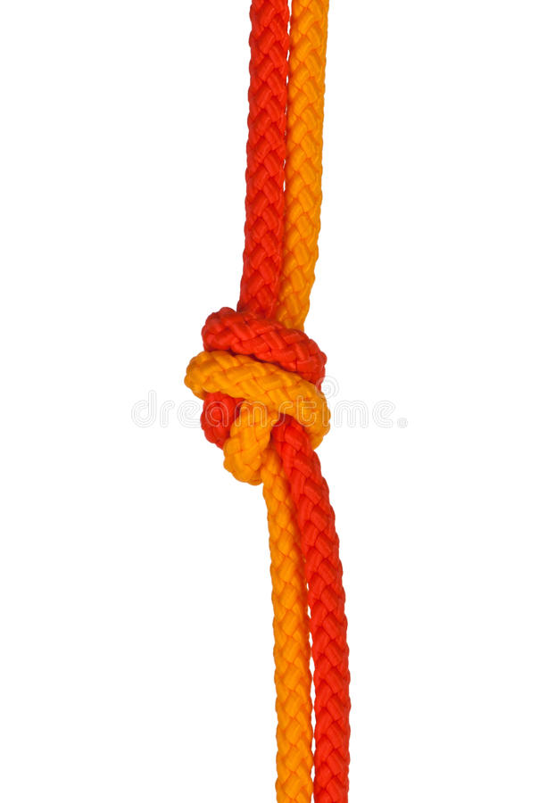 Download Strong knot stock photo. Image of bend, kink, isolated - 16449916