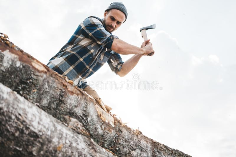 Strong logger worker cuts tree in forest. Ax close up, blurred lumberjack on background stock image
