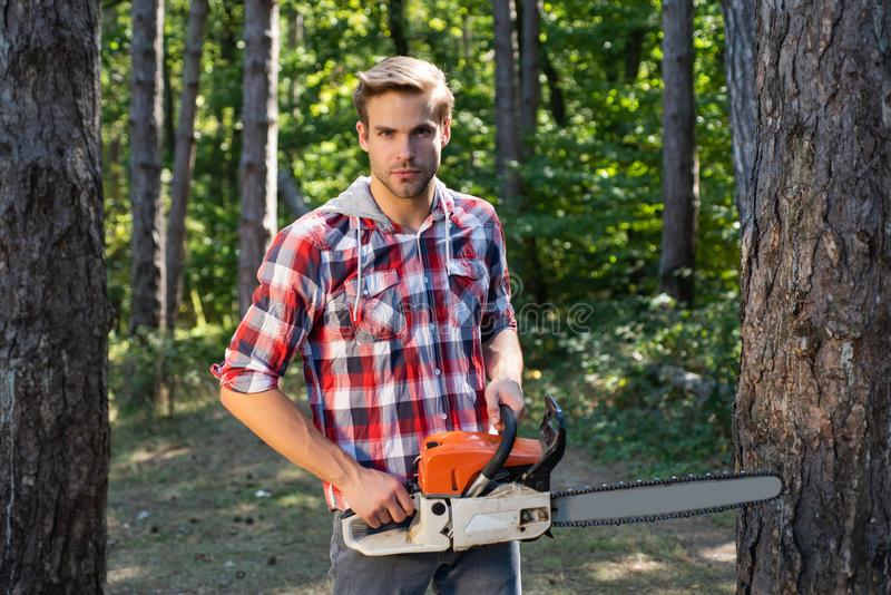 Strong lumberjack with an axe or chainsaw in a plaid shirt. Lumberjack on serious face carries chainsaw. Deforestation royalty free stock image