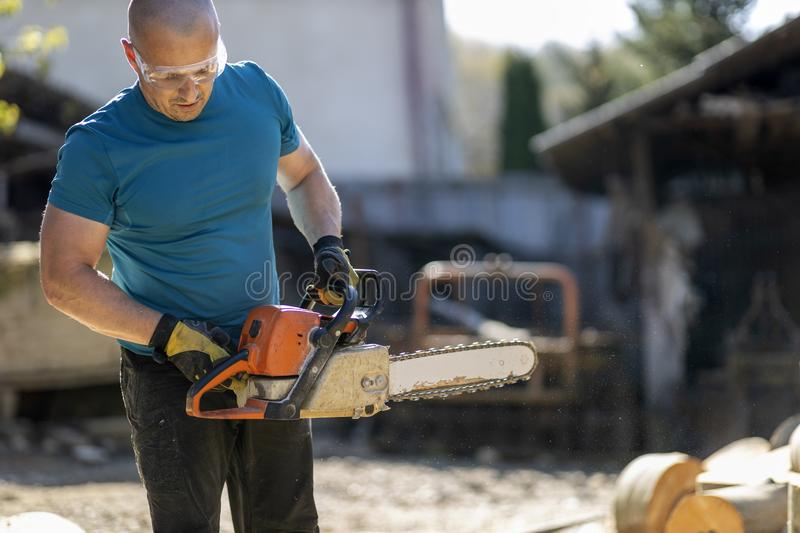 lumberjack with chainsaw, working on beech logs royalty free stock photo