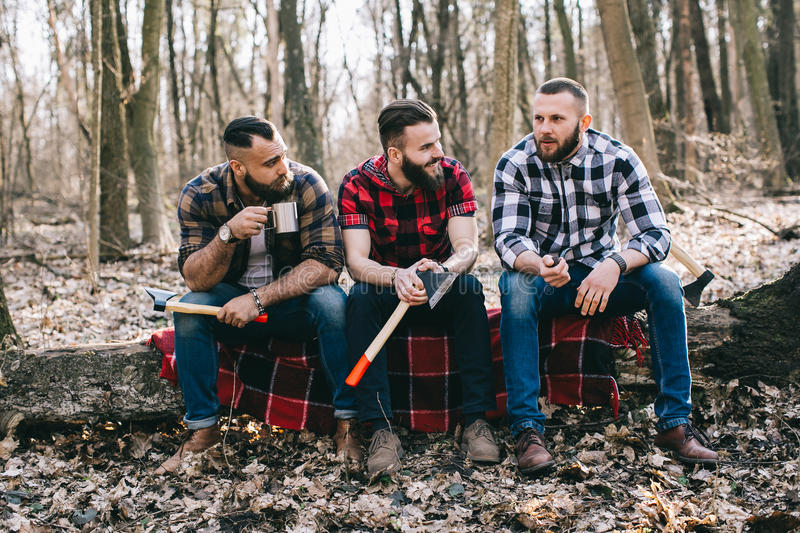 Strong lumberjack chopping wood. Strong and diligent lumberjack working in the forest. Lumberjack working with an ax royalty free stock images