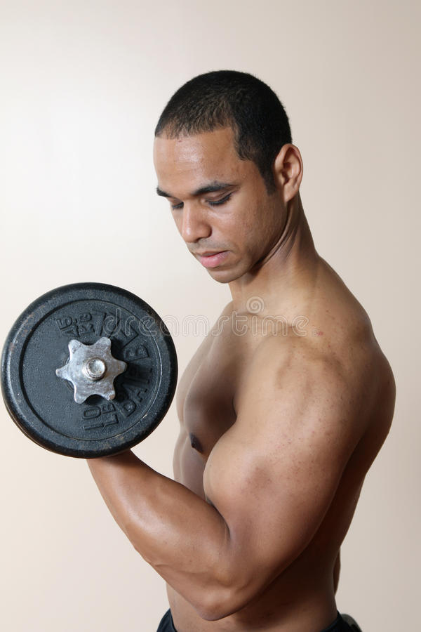 Download Strong Male Lifting Dumbbell Stock Photo - Image of bodybuilder, flex: 10271802