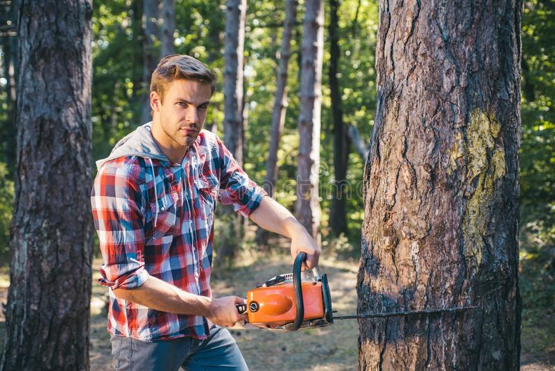 Strong man lumberjack with an axe or chainsaw in a plaid shirt. A handsome young man with a beard carries a tree. Strong man lumberjack with an axe or chainsaw royalty free stock photo
